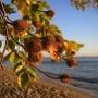 Jastarnia - piękna nie tylko latem :)
