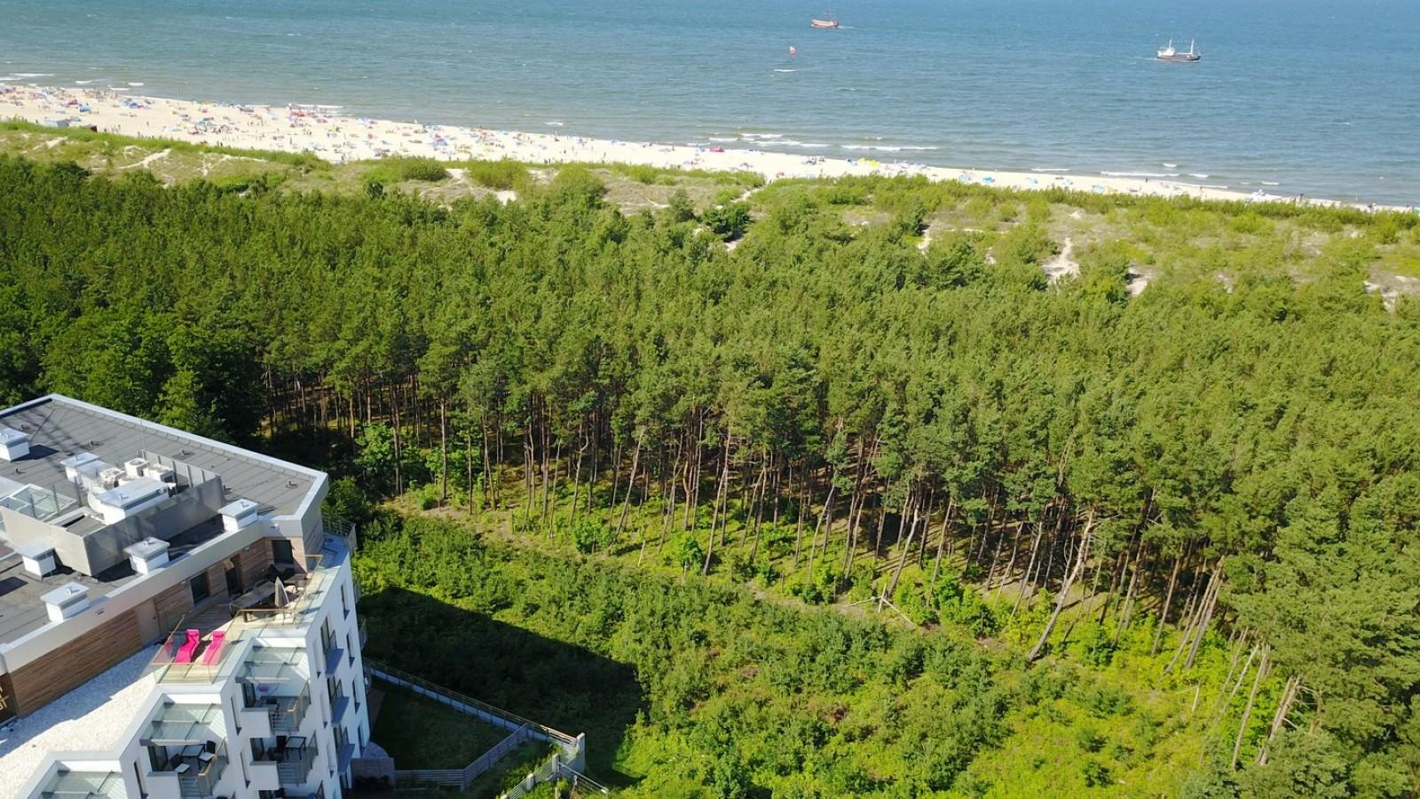 Penthouse Gwiazda Północy - 30 metrów od plaży, w lasku sosnowym