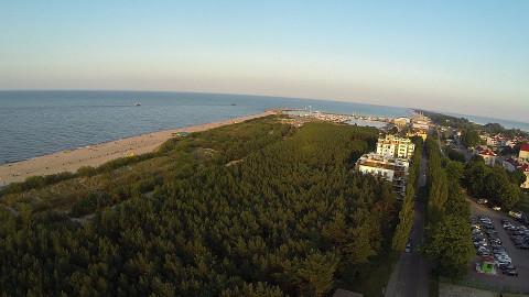 Gwiazda Morza - lasek sosnowy  i morze